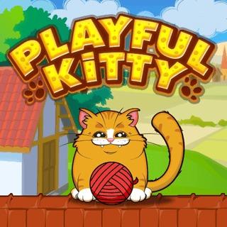 Playful Kitty