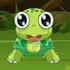 Turtle Eat Leaf
