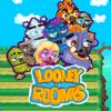Looney Roonks