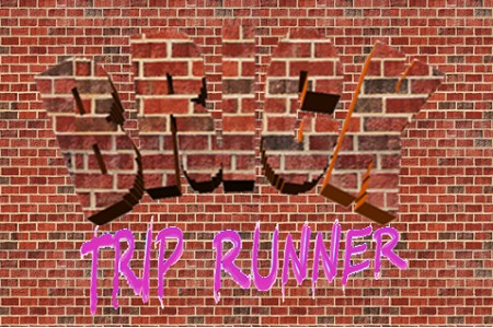 Brick Trip Runer