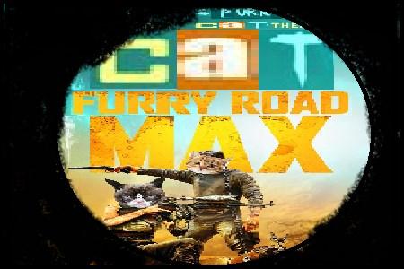 Cat Max Furry Road