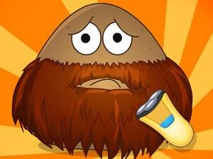 Pou barbudo