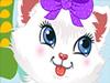 Cute Persian Kitty