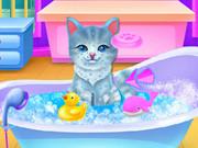 Kitties Pet Wedding
